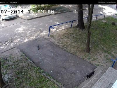 Городская видеокамера cam8911