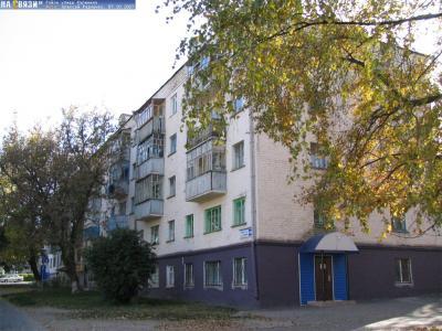 ул. Калинина, 106