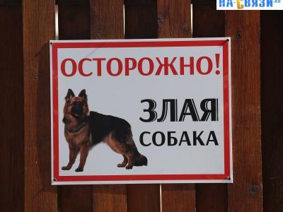 """""""Осторожно! Злая собака"""""""