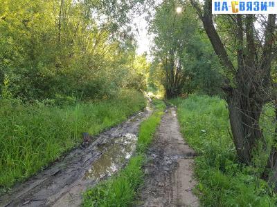 Грунтовая дорога - улица Рябиновская