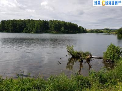 Старый чандровский пруд