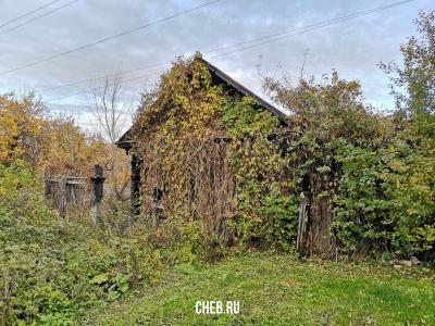 Заросший дом (ул. Колхозная 9)