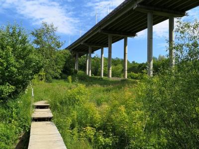 Гагаринский мостик