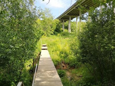 Гагаринский мостик через Трусиху