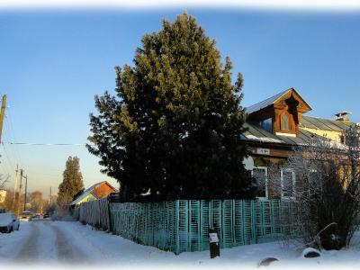 Перекресток улиц Пугачева и Чехова