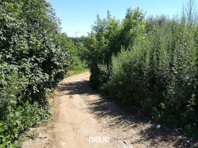 Дорога в сторону улицы Гладкова