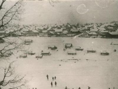 Вид из Лакреевского леса на Богданку (ул.Яблоневая) 1960-е