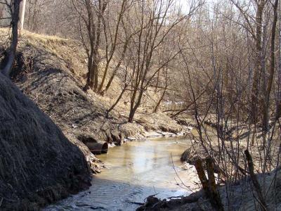 Река Трусиха
