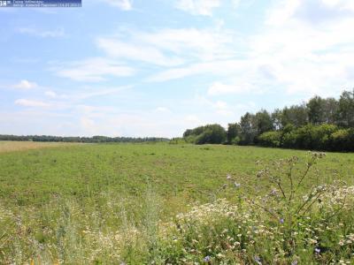 Вид с Кировской дороги