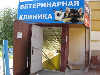 """Ветеринарная клиника """"Неотложка для собаки и кошки"""""""
