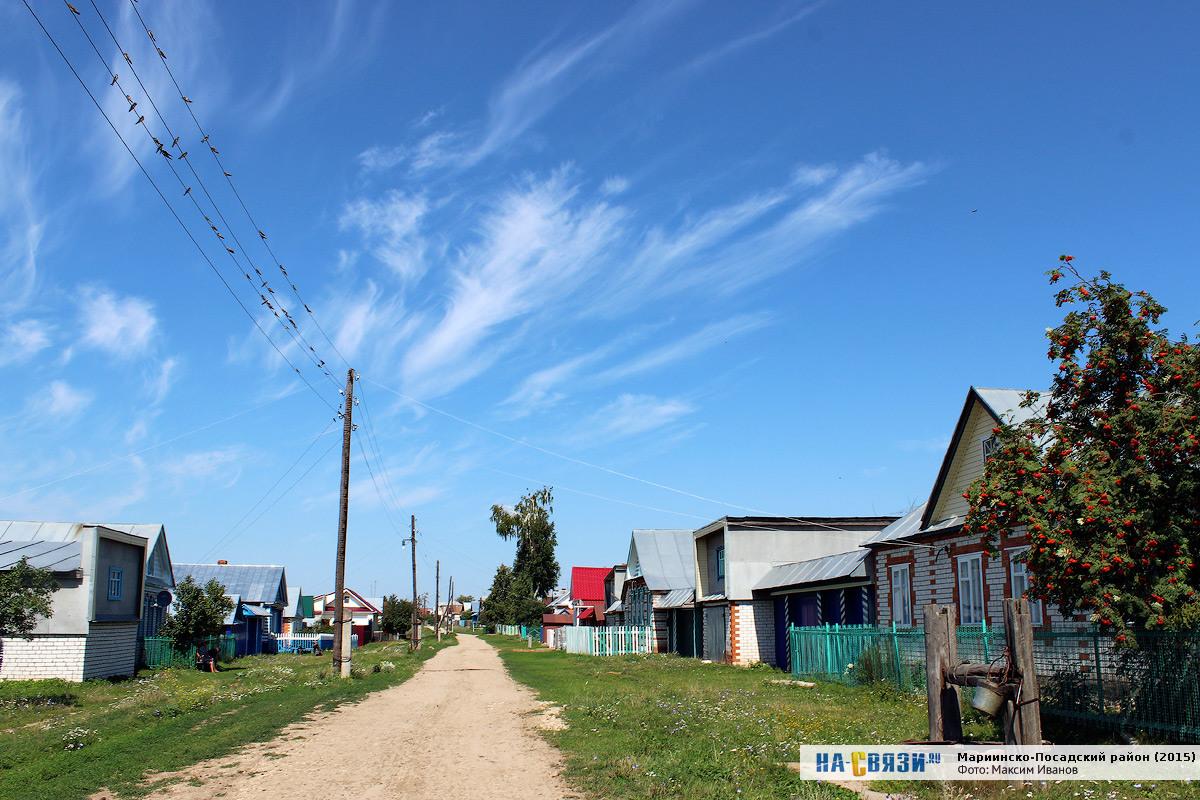 Шульгино марпосадский район фото