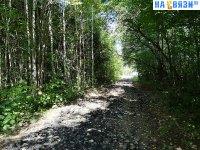 Дорожка к Алатырскому шоссе