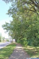 Дорожка вдоль Зоркого переулка
