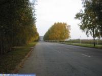 Улица Скворцова