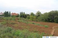 Огороды - Территория не подходящая для застройки