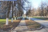 Пешеходная дорожка по улице Молодежной