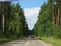 Сосновское шоссе