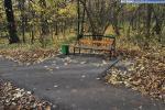 Скамейка в роще Гузовского
