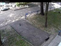 Сервис городских видеокамер от Инфолинк (камера cam8911)