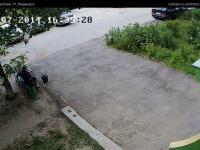 Сервис городских видеокамер от Инфолинк (камера cam9731)