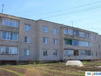Дом 30 на улице Степанова