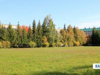 Спортивное поле училища №28