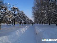 Зимняя дорожка вдоль улицы Мичмана Павлова