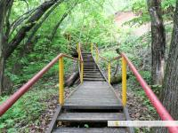 Лестница к роднику на Талвира