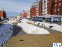 Приволжский бульвар зимой