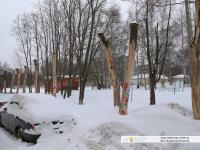 Художественная роспись на стволах деревьев