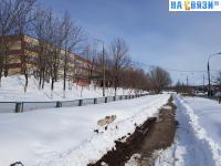 Пешеходная дорожка вдоль улицы Кукшумская и 47 школы