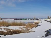 Панорама болота
