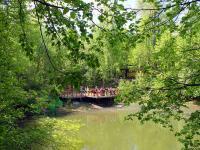Пруд в парке приключений Банзай