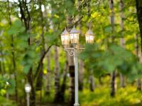 Свадебный шатёр «Яблоневый Сад»