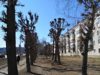 Кронированные деревья у Гражданская 58