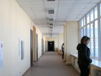 В коридорах  юридического факультета.