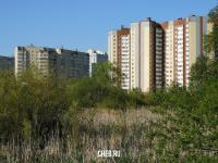 Вид на ЖК Бауманский с реки Кукшум