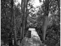 Мост через Сугутку в районе Владимирской горки