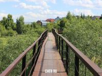 Пешеходный мост над рекой Шалмас
