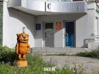 Кот на входе в офисный центр на ул. Сверчкова 6Б