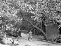Пешеходный мост черезЧебоксарку в парке им.Крупской (ул.Р.Люксембург), 1979 год