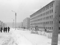 Улица Грасиса, 1976 год