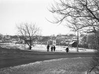 Остатки от парка Крупской, 1979 год