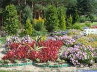 """Цветники возле санатория """"Чувашия"""""""