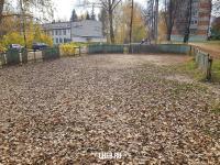 Опавшие листья в хоккейной коробке