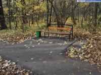 Скамейка в роще Гузовского осенью