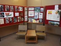 Библиотека-филиал №17