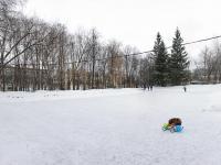 Ледовый каток в парке Николаева