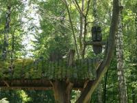 Деревянная сова