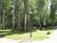 Беседки в лесу